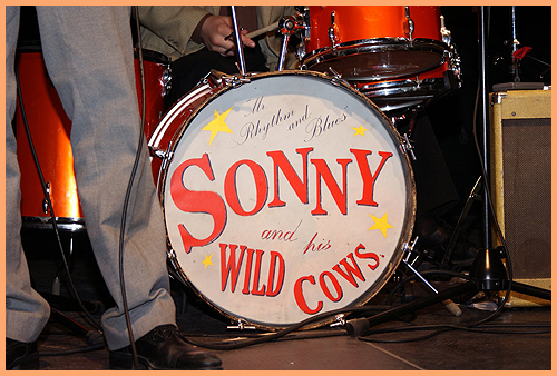 Sonny and his Wild Cows