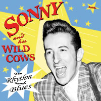 Sonny and his Wild Cows - Mr. Rhythm-and-Blues